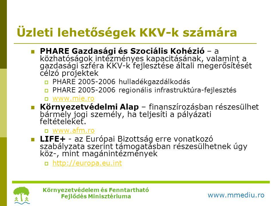 Üzleti lehetőségek KKV-k számára  PHARE Gazdasági és Szociális Kohézió – a közhatóságok intézményes kapacitásának, valamint a gazdasági szféra KKV-k