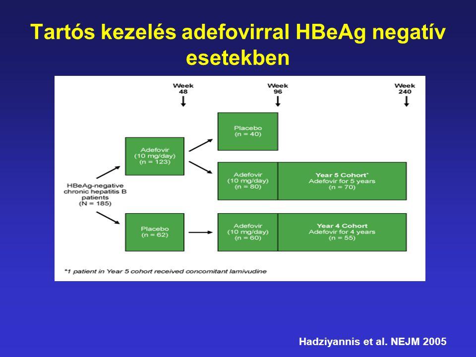Egy éves Adefovir kezelés a HBeAg-negatív CHB csoportban * HBV DNS <1000 copy/mL Hadziyannis et al.NEJM 2005 Betegek (%) ALT normalizálódott Hét 32% 8% HBV DNS válasz* Adefovir 10 mg qd 31% 5% 0% 10% 20% 30% 40% 50% 60% 70% 80% 90% 100% 0481224364860728496