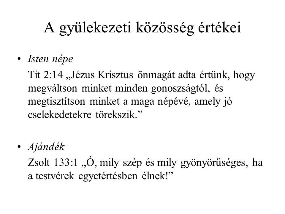 """•A szociális korlátok megszűnése Gal 3:26k """"Mert mind Isten fiai vagytok a Jézus Krisztusban való hit által … Krisztusban nincs zsidó, sem görög, nincs szolga, sem szabad, nincs férfi, sem nő, mert ti mind egyek vagytok a Krisztus Jézusban."""