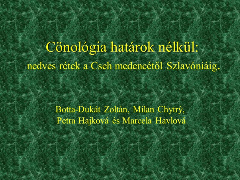 Tudományos háttér •Általánosan elfogadott, hogy –a kiszáradó láprétek és a mocsárrétek egy asszociációrendbe (Molinietalia) tartoznak –a nyugat- és közép-európai magaskórós mocsárrétek (Calthion) eltérnek a kárpát- medencei szubkontinentális mocsárrétektől •Vitatott viszont –a szubkontinentális mocsárrétek felosztása