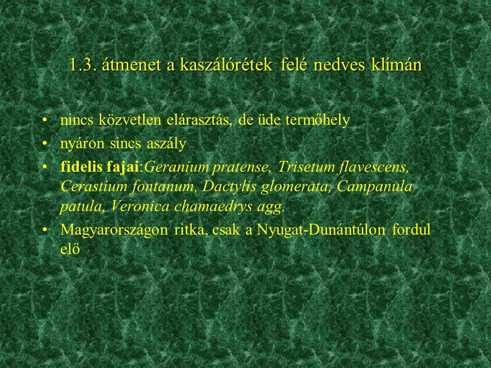 1.3. átmenet a kaszálórétek felé nedves klímán •nincs közvetlen elárasztás, de üde termőhely •nyáron sincs aszály •fidelis fajai:Geranium pratense, Tr