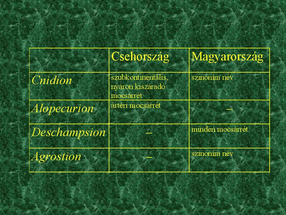 Felhasznált felvételek kiválasztásának szempontjai •Syntaxonómiai besorolás –Molinietalia rend •Abiotikus tényezők –300 m tszf.