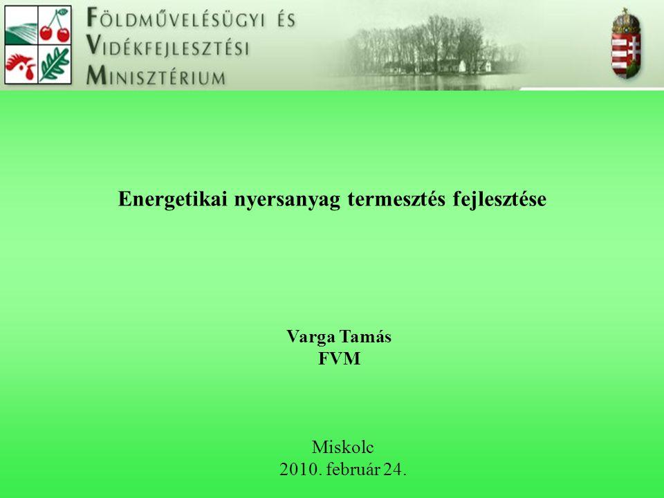 Energetikai nyersanyag termesztés fejlesztése Miskolc 2010. február 24. Varga Tamás FVM