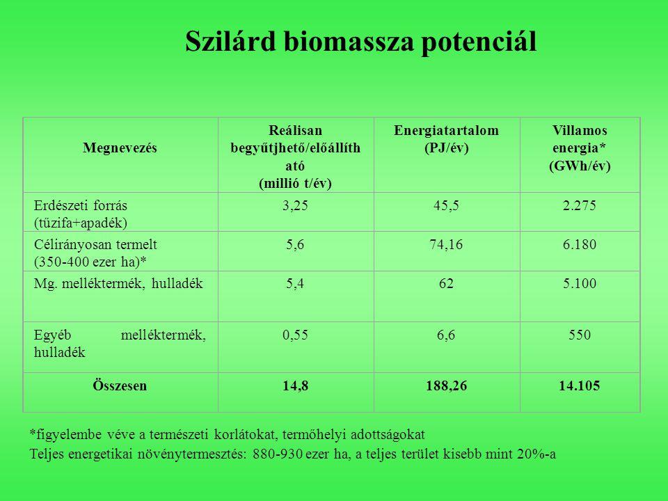 Megnevezés Reálisan begyűtjhető/előállíth ató (millió t/év) Energiatartalom (PJ/év) Villamos energia* (GWh/év) Erdészeti forrás (tűzifa+apadék) 3,2545,52.275 Célirányosan termelt (350-400 ezer ha)* 5,674,166.180 Mg.