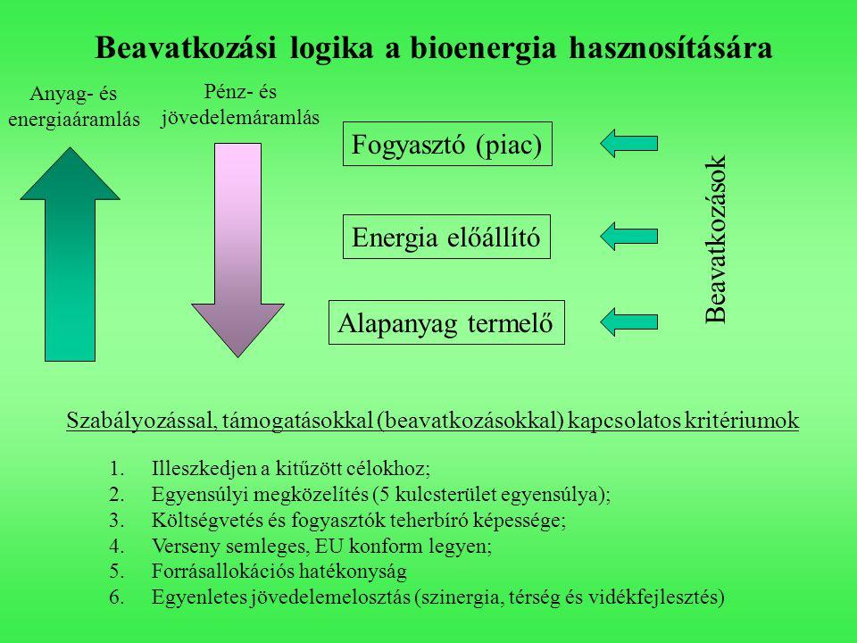 Beavatkozási logika a bioenergia hasznosítására Fogyasztó (piac) Energia előállító Alapanyag termelő Pénz- és jövedelemáramlás Anyag- és energiaáramlás Szabályozással, támogatásokkal (beavatkozásokkal) kapcsolatos kritériumok 1.Illeszkedjen a kitűzött célokhoz; 2.Egyensúlyi megközelítés (5 kulcsterület egyensúlya); 3.Költségvetés és fogyasztók teherbíró képessége; 4.Verseny semleges, EU konform legyen; 5.Forrásallokációs hatékonyság 6.Egyenletes jövedelemelosztás (szinergia, térség és vidékfejlesztés) Beavatkozások