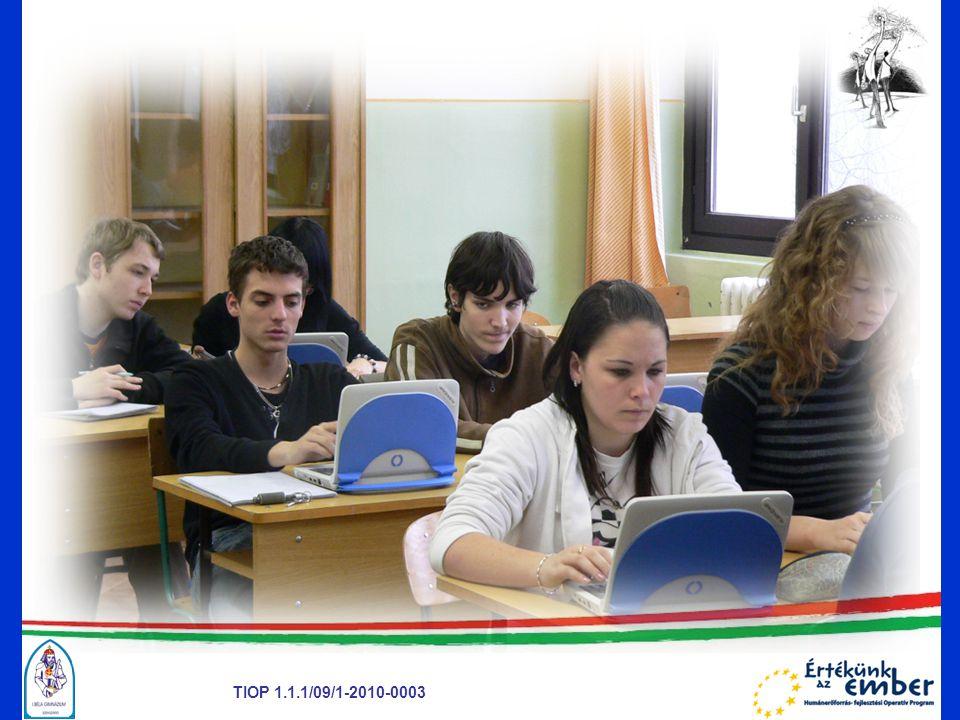 TIOP 1.1.1/09/1-2010-0003