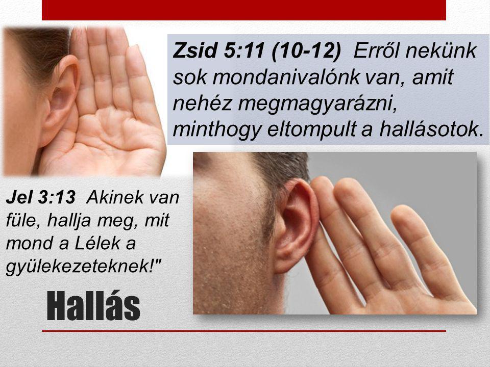 Hallás Zsid 5:11 (10-12) Erről nekünk sok mondanivalónk van, amit nehéz megmagyarázni, minthogy eltompult a hallásotok. Jel 3:13 Akinek van füle, hall