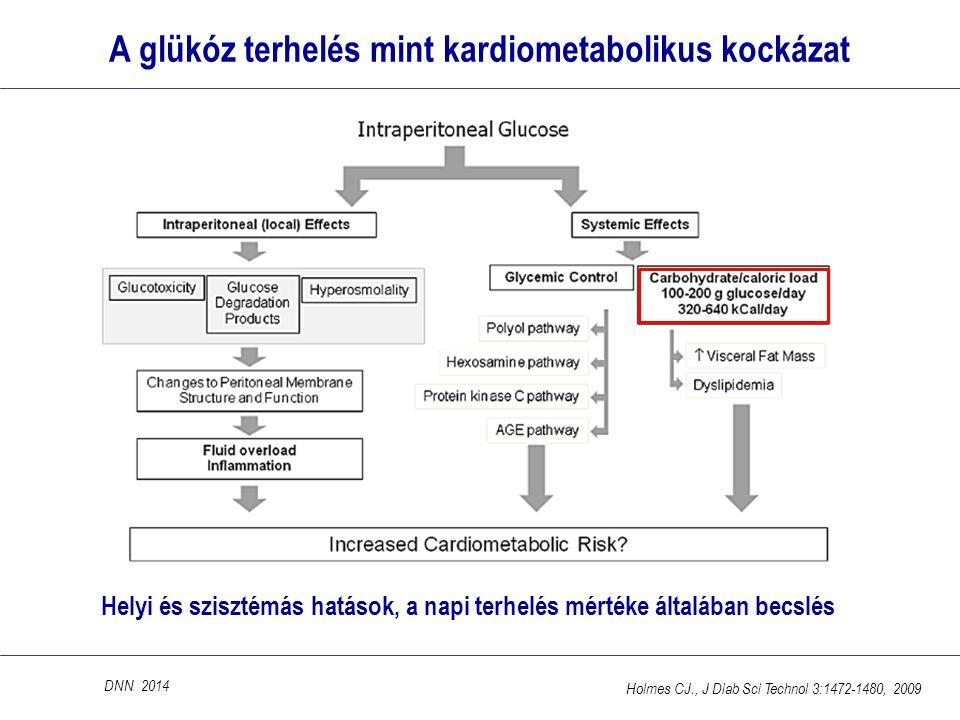 A glükóz terhelés mint kardiometabolikus kockázat Helyi és szisztémás hatások, a napi terhelés mértéke általában becslés DNN 2014 Holmes CJ., J Diab S