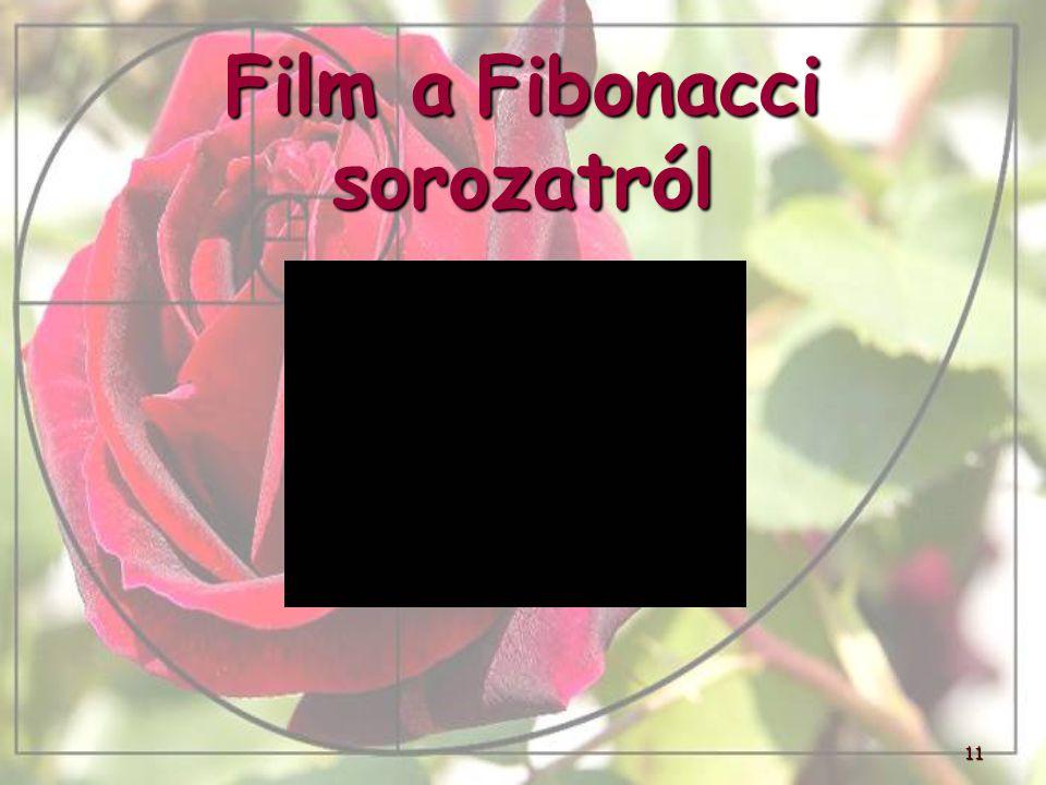 Film a Fibonacci sorozatról 11