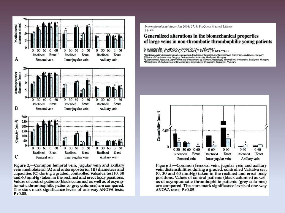 A véna saphena főágának parciális krónikus okklúziója, patkányban, Ki67 sejtosztódási antigén
