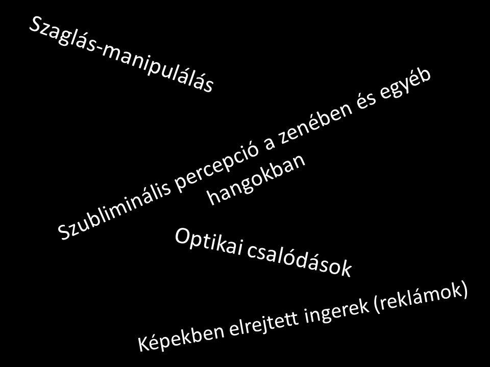 Képekben elrejtett ingerek (reklámok) Szaglás-manipulálás Szubliminális percepció a zenében és egyéb hangokban Optikai csalódások