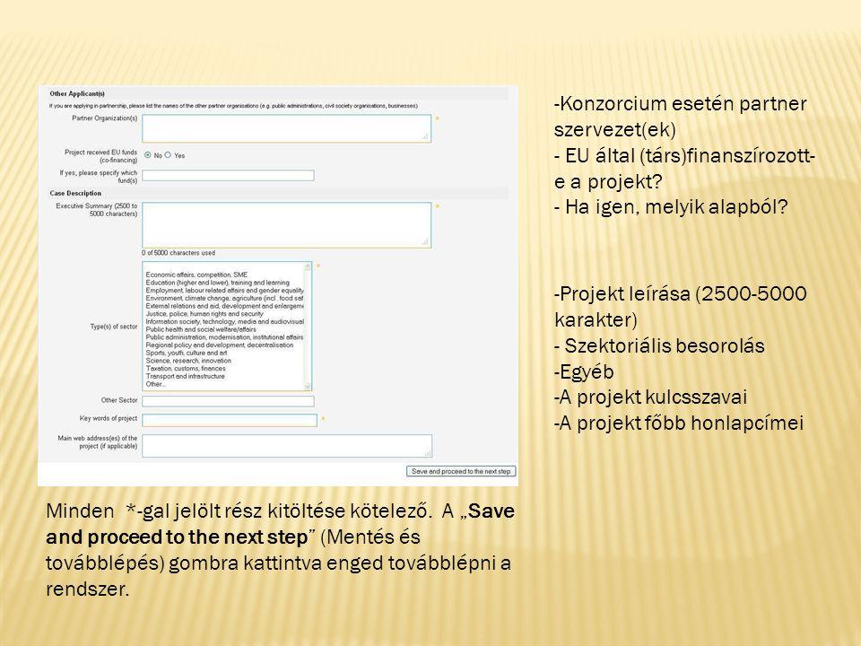 -A projekt háttere -Általános és specifikus célok -A projekt során felhasznált források/inputok (HR, költségvetés, stb.) -Megvalósítás (pl.