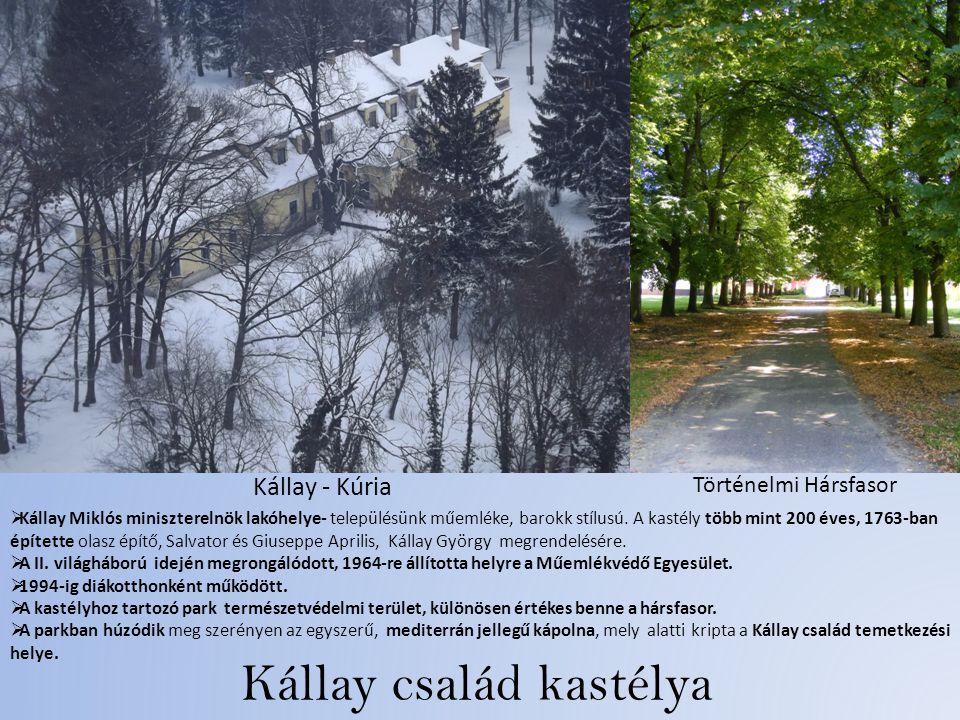 Kállay család kastélya Kállay - Kúria Történelmi Hársfasor  Kállay Miklós miniszterelnök lakóhelye- településünk műemléke, barokk stílusú.