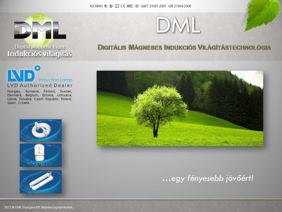 A gyártó LVD - Shanghai Hongyuan Lighting & Electric Equipment Company, Ltd.