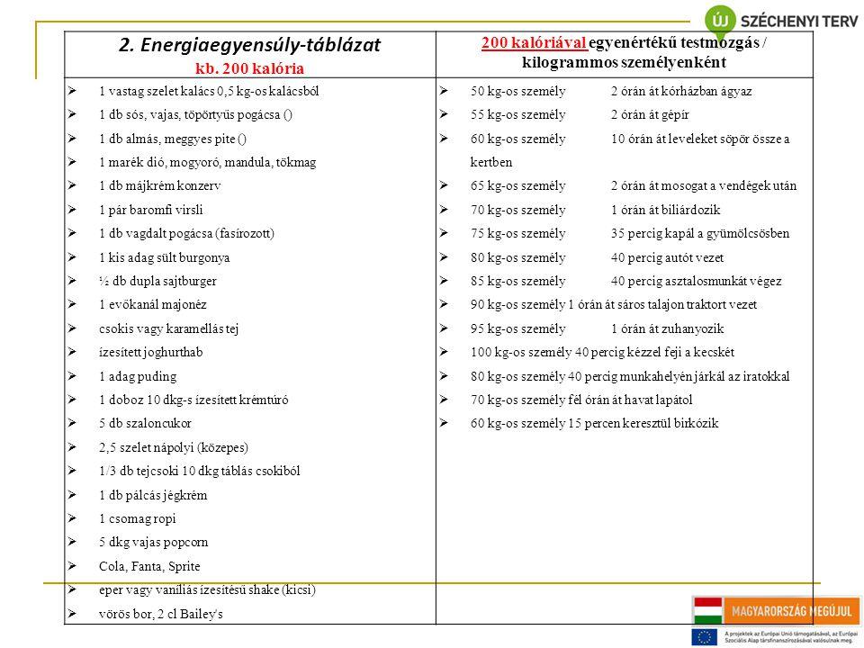 2. Energiaegyensúly-táblázat kb.