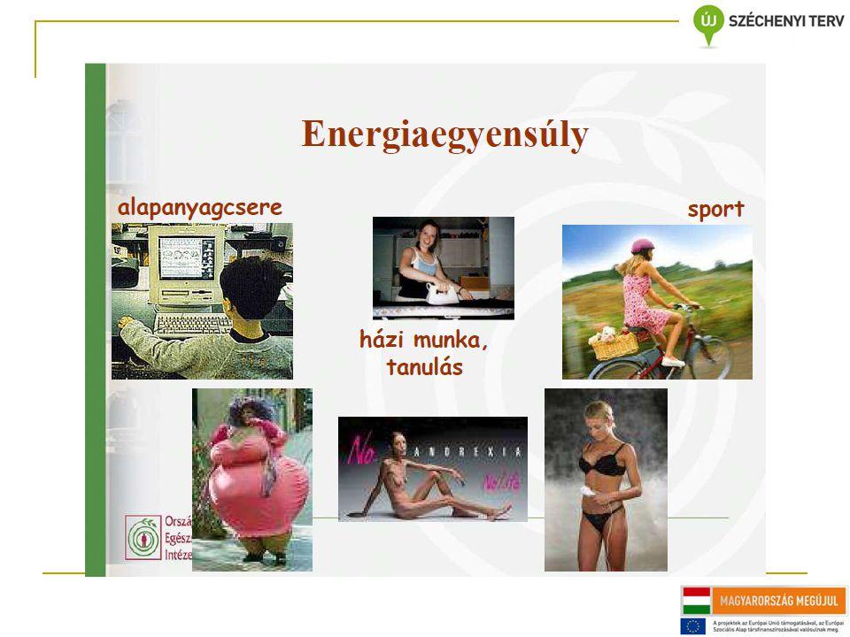 1.Energiaegyensúly-táblázat kb.