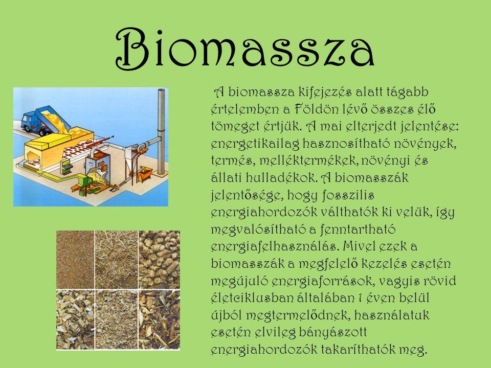 Biomassza A biomassza kifejezés alatt tágabb értelemben a Földön lév ő összes él ő tömeget értjük. A mai elterjedt jelentése: energetikailag hasznosít
