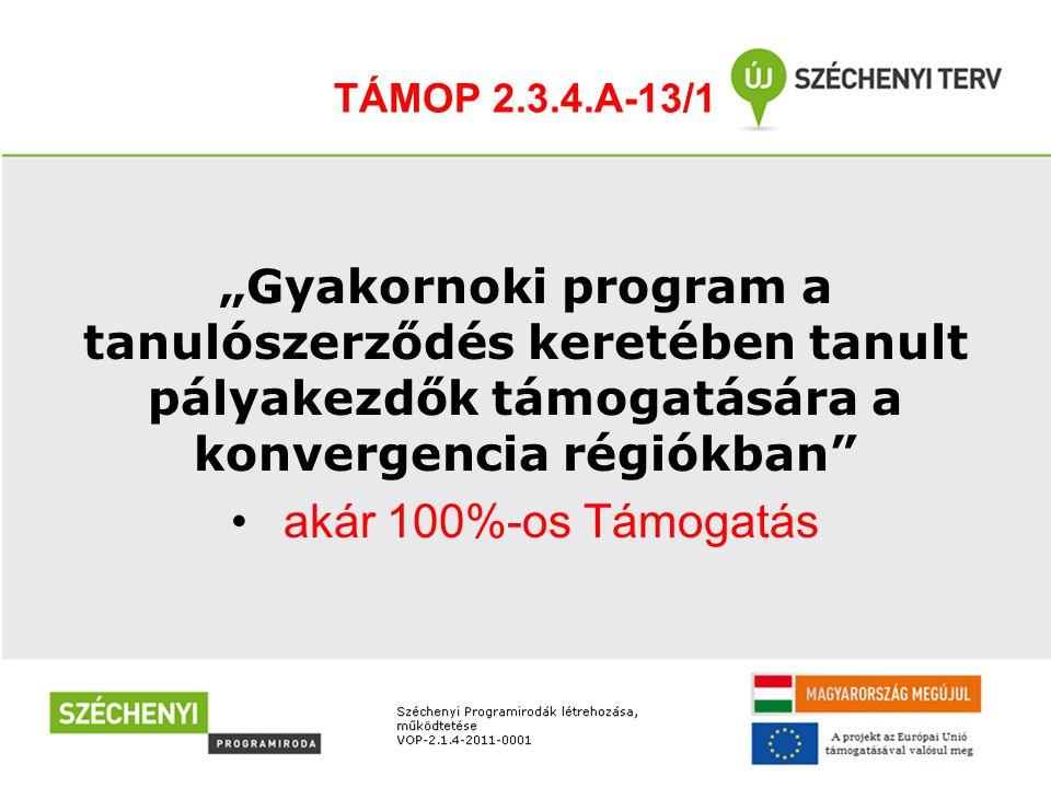 """TÁMOP 2.3.4.A-13/1 """"Gyakornoki program a tanulószerződés keretében tanult pályakezdők támogatására a konvergencia régiókban • akár 100%-os Támogatás"""