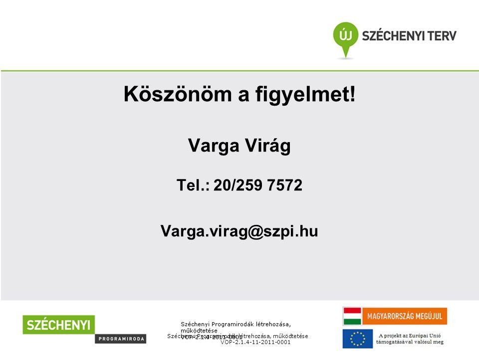 Széchenyi Programirodák létrehozása, működtetése VOP-2.1.4-11-2011-0001 Köszönöm a figyelmet.