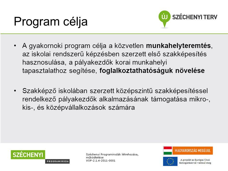 Program célja •A gyakornoki program célja a közvetlen munkahelyteremtés, az iskolai rendszerű képzésben szerzett első szakképesítés hasznosulása, a pályakezdők korai munkahelyi tapasztalathoz segítése, foglalkoztathatóságuk növelése •Szakképző iskolában szerzett középszintű szakképesítéssel rendelkező pályakezdők alkalmazásának támogatása mikro-, kis-, és középvállalkozások számára