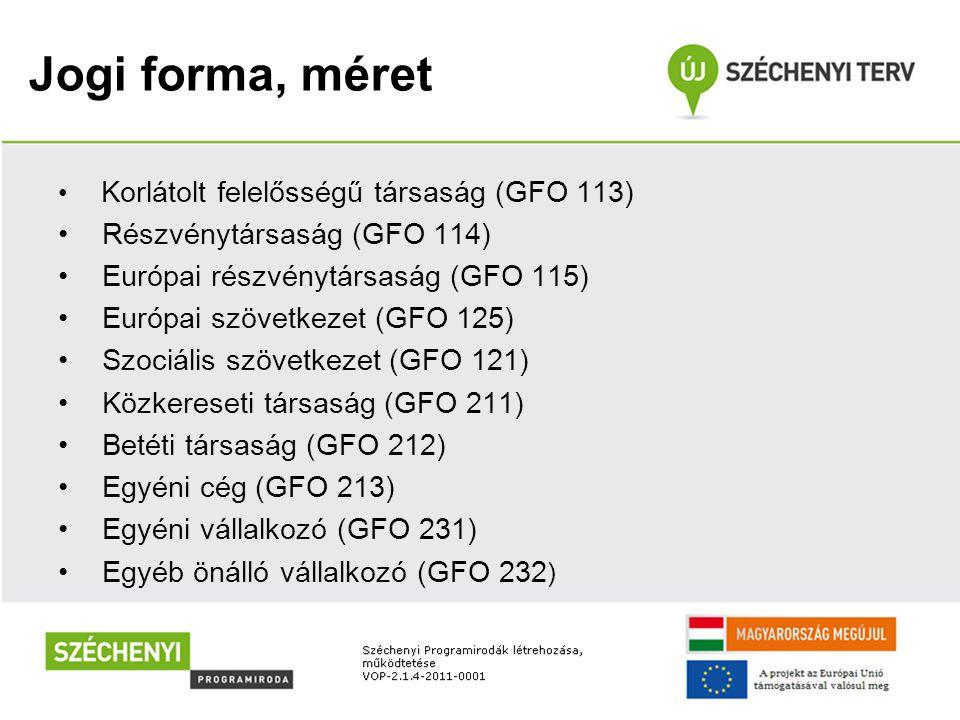 Jogi forma, méret • Korlátolt felelősségű társaság (GFO 113) • Részvénytársaság (GFO 114) • Európai részvénytársaság (GFO 115) • Európai szövetkezet (GFO 125) • Szociális szövetkezet (GFO 121) • Közkereseti társaság (GFO 211) • Betéti társaság (GFO 212) • Egyéni cég (GFO 213) • Egyéni vállalkozó (GFO 231) • Egyéb önálló vállalkozó (GFO 232 )
