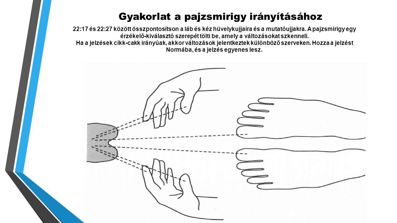Gyakorlat a pajzsmirigy irányításához 22:17 és 22:27 között összpontosítson a láb és kéz hüvelykujjaira és a mutatóujjakra.