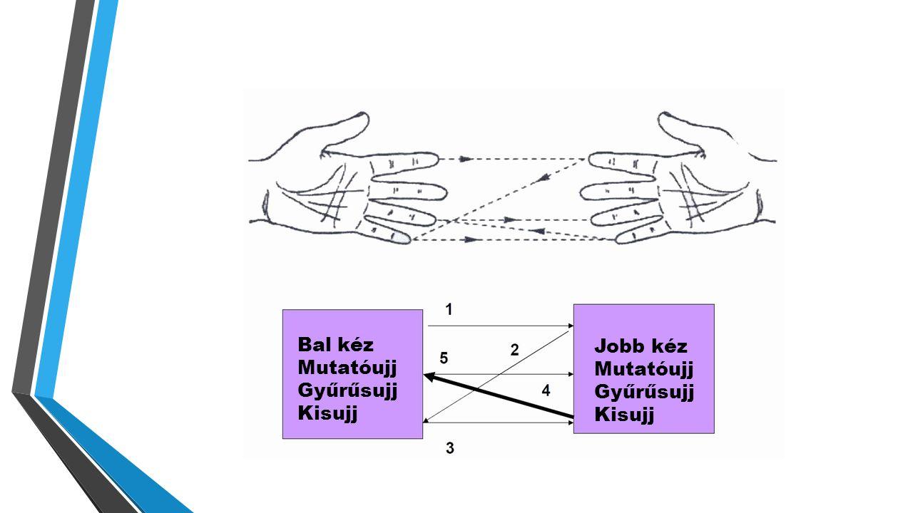 Bal kéz Mutatóujj Gyűrűsujj Kisujj Jobb kéz Mutatóujj Gyűrűsujj Kisujj