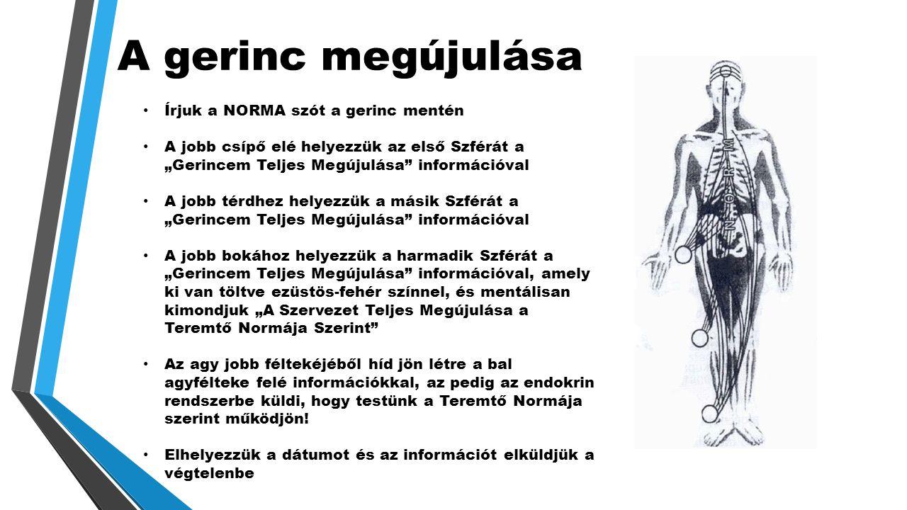 """A gerinc megújulása • Írjuk a NORMA szót a gerinc mentén • A jobb csípő elé helyezzük az első Szférát a """"Gerincem Teljes Megújulása információval • A jobb térdhez helyezzük a másik Szférát a """"Gerincem Teljes Megújulása információval • A jobb bokához helyezzük a harmadik Szférát a """"Gerincem Teljes Megújulása információval, amely ki van töltve ezüstös-fehér színnel, és mentálisan kimondjuk """"A Szervezet Teljes Megújulása a Teremtő Normája Szerint • Az agy jobb féltekéjéből híd jön létre a bal agyfélteke felé információkkal, az pedig az endokrin rendszerbe küldi, hogy testünk a Teremtő Normája szerint működjön."""