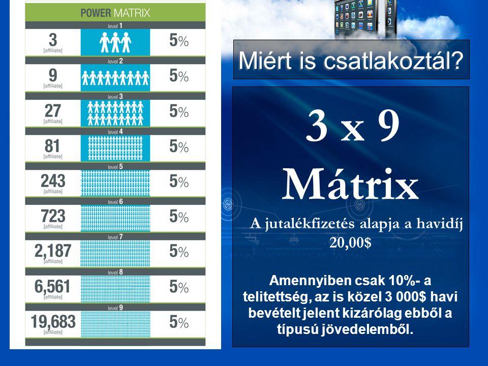 3 x 9 Mátrix A jutalékfizetés alapja a havidíj 20,00$ Amennyiben csak 10%- a telitettség, az is közel 3 000$ havi bevételt jelent kizárólag ebből a típusú jövedelemből.