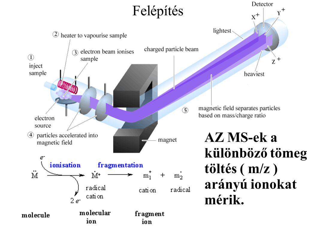 Felépítés 2 A tömegspektrométer felépítése: •Vákuum pumpa (minimum 2 fokozat): - elővákuum rotációs szivattyú (1-0,1 KPa) - Turbómolekuláris szivattyú, vagy olajdiffúziós pumpa (10 -6 -10 -7 KPa) •Ionforrás Ion analizátor Detektor