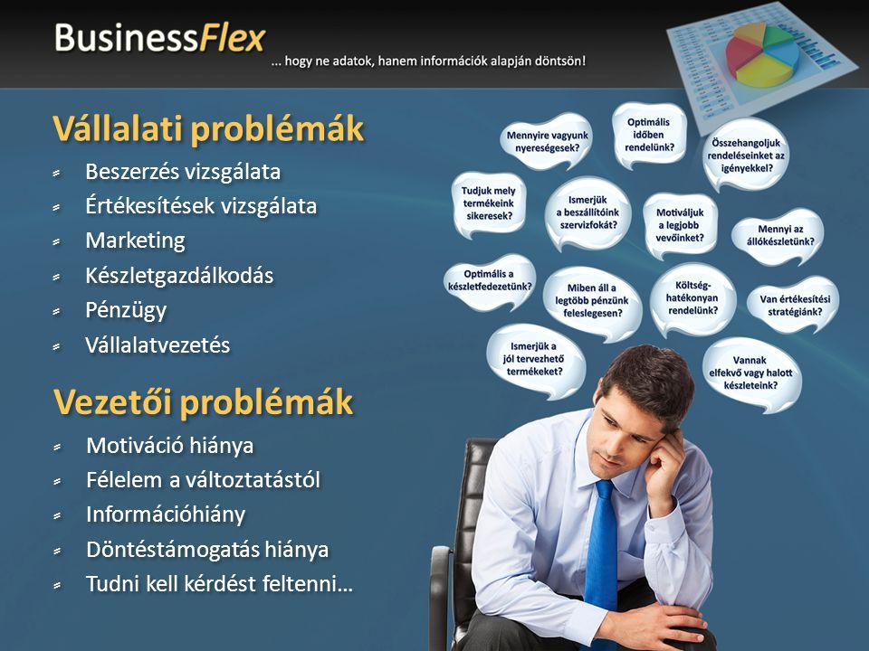 Vállalati problémák ⸗Beszerzés vizsgálata ⸗Értékesítések vizsgálata ⸗Marketing ⸗Készletgazdálkodás ⸗Pénzügy ⸗Vállalatvezetés Vállalati problémák ⸗Beszerzés vizsgálata ⸗Értékesítések vizsgálata ⸗Marketing ⸗Készletgazdálkodás ⸗Pénzügy ⸗Vállalatvezetés Vezetői problémák ⸗Motiváció hiánya ⸗Félelem a változtatástól ⸗Információhiány ⸗Döntéstámogatás hiánya ⸗Tudni kell kérdést feltenni… Vezetői problémák ⸗Motiváció hiánya ⸗Félelem a változtatástól ⸗Információhiány ⸗Döntéstámogatás hiánya ⸗Tudni kell kérdést feltenni…