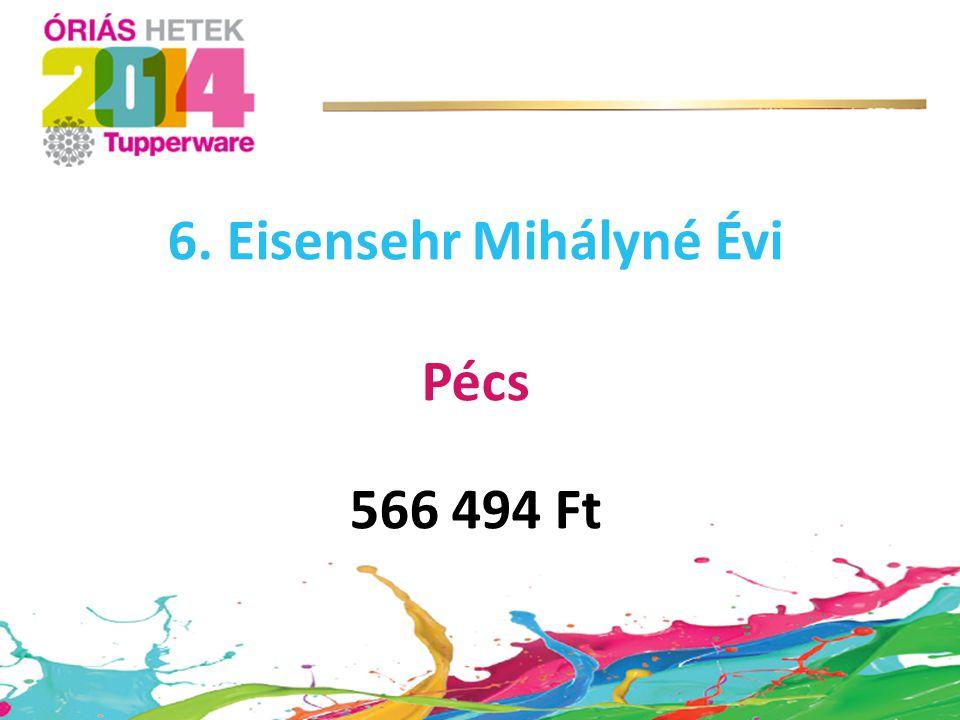 6. Eisensehr Mihályné Évi Pécs 566 494 Ft