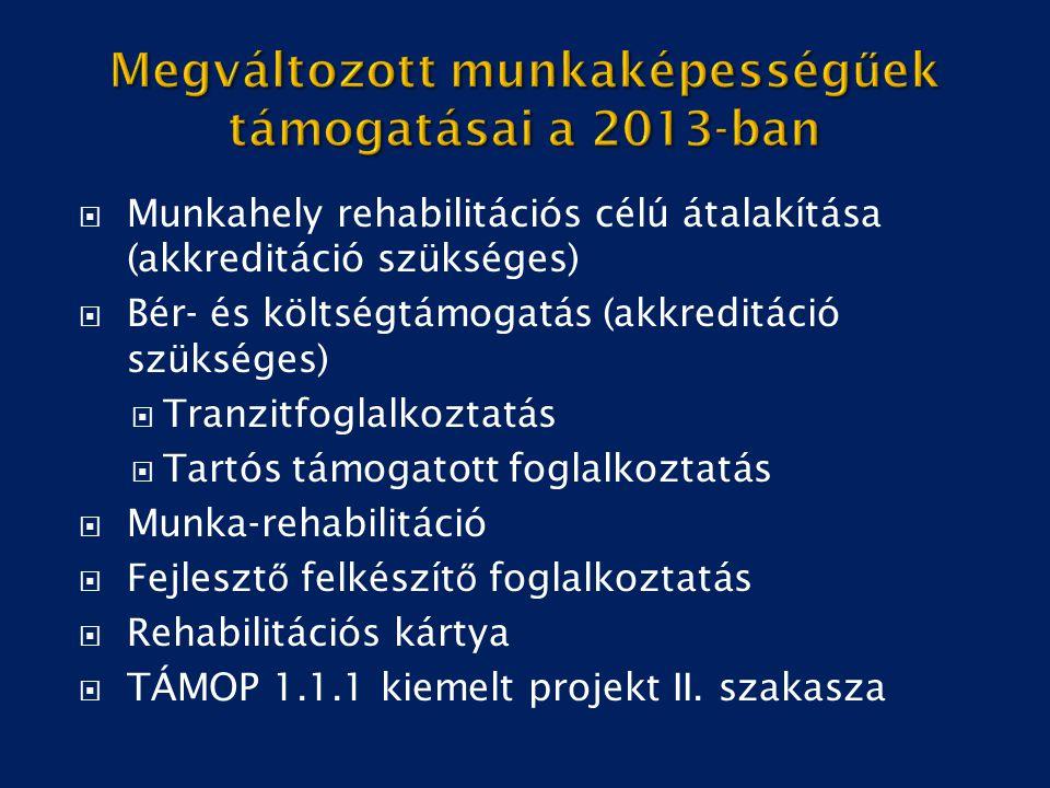  Munkahely rehabilitációs célú átalakítása (akkreditáció szükséges)  Bér- és költségtámogatás (akkreditáció szükséges)  Tranzitfoglalkoztatás  Tar