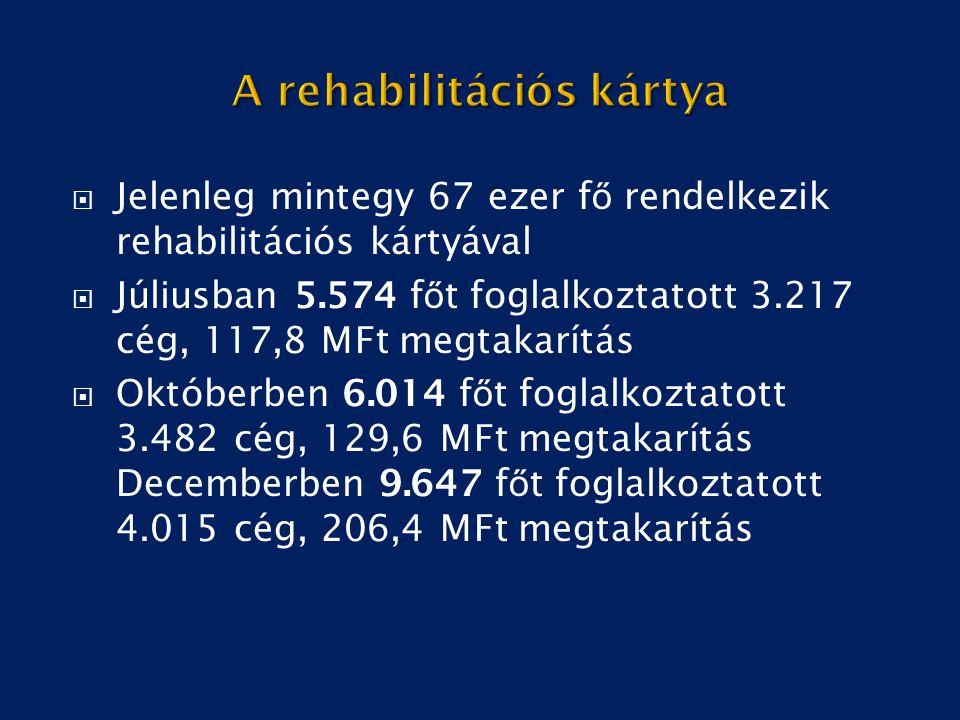  Jelenleg mintegy 67 ezer f ő rendelkezik rehabilitációs kártyával  Júliusban 5.574 f ő t foglalkoztatott 3.217 cég, 117,8 MFt megtakarítás  Októbe
