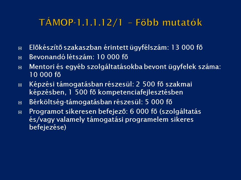  El ő készít ő szakaszban érintett ügyfélszám: 13 000 f ő  Bevonandó létszám: 10 000 f ő  Mentori és egyéb szolgáltatásokba bevont ügyfelek száma:
