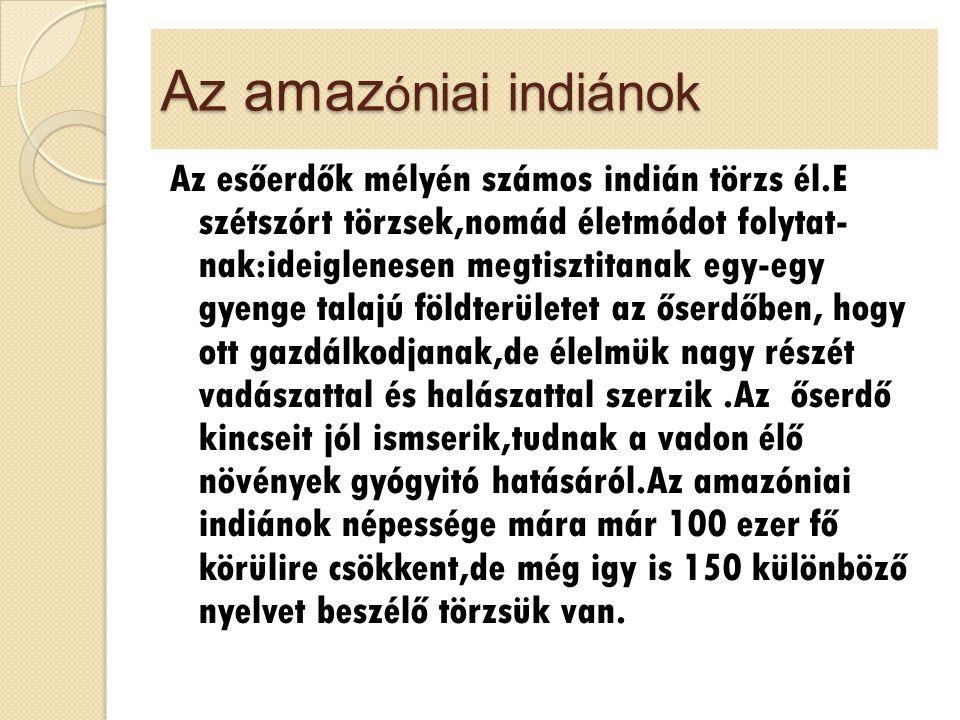 Az amaz ó niai indiánok Az esőerdők mélyén számos indián törzs él.E szétszórt törzsek,nomád életmódot folytat- nak:ideiglenesen megtisztitanak egy-egy