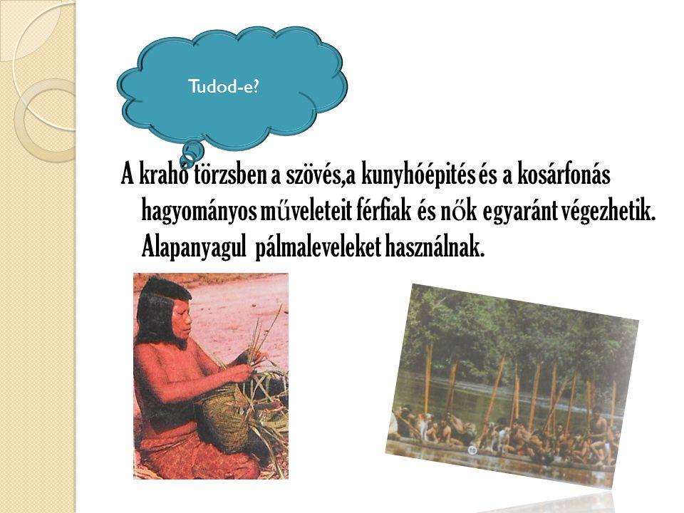 Tudod-e? A krahó törzsben a szövés,a kunyhóépités és a kosárfonás hagyományos m ű veleteit férfiak és n ő k egyaránt végezhetik. Alapanyagul pálmaleve