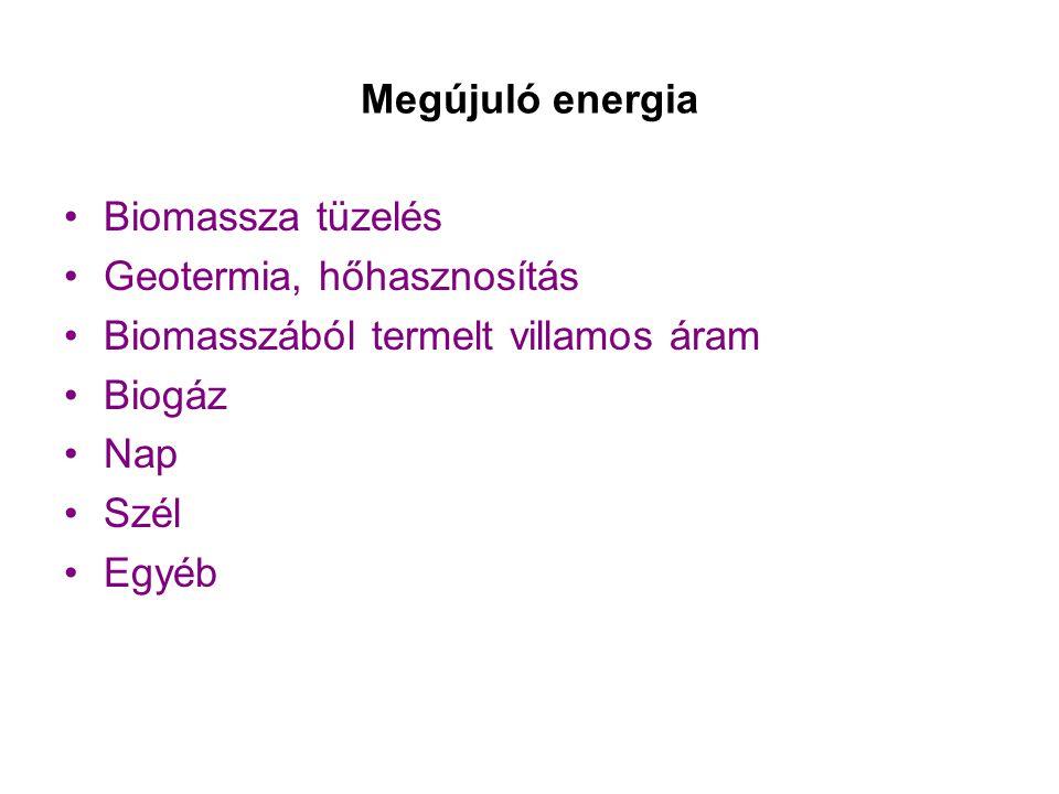 Megújuló energia •Biomassza tüzelés •Geotermia, hőhasznosítás •Biomasszából termelt villamos áram •Biogáz •Nap •Szél •Egyéb