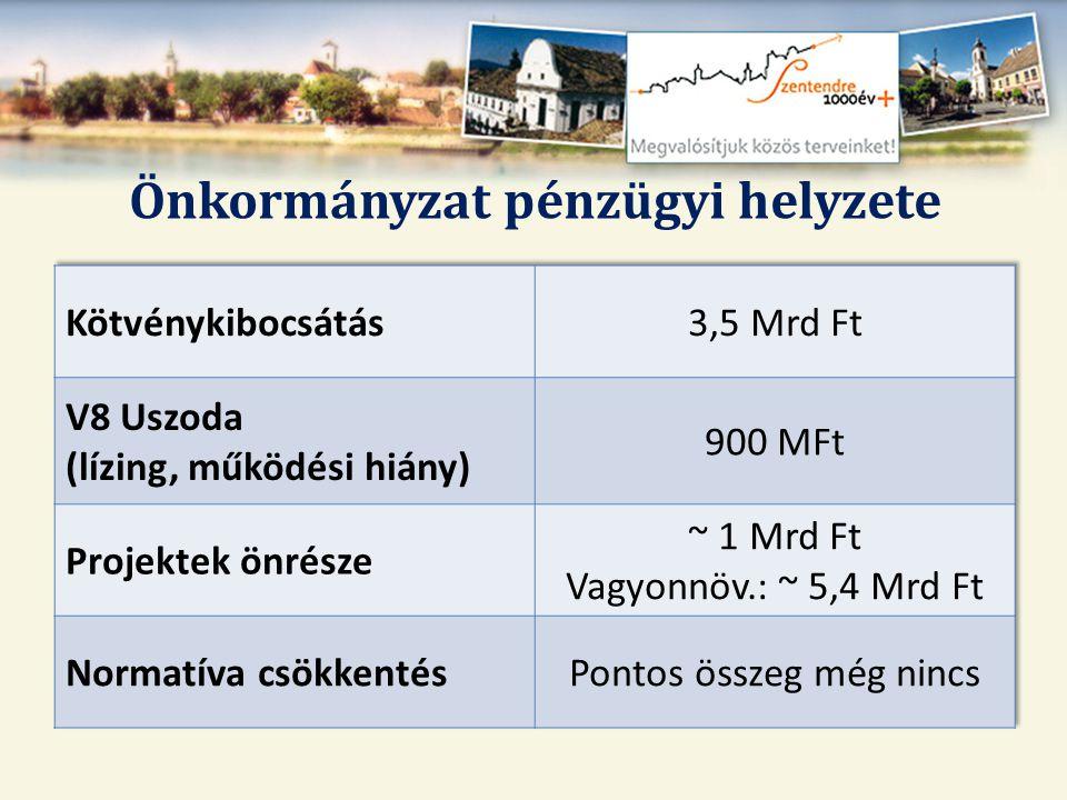 Vállalkozói referens 2011.