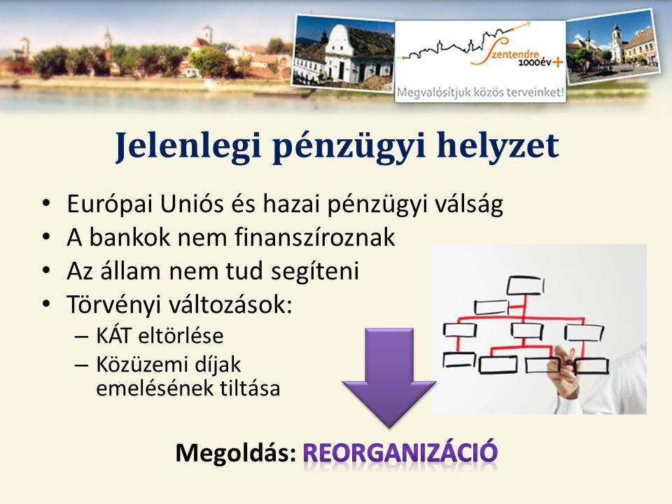 A REORGANIZÁCIÓ LÉPÉSEI (saját erőből megtett intézkedések) • 2011- ben tett zárolások, intézményátadások • 2012.