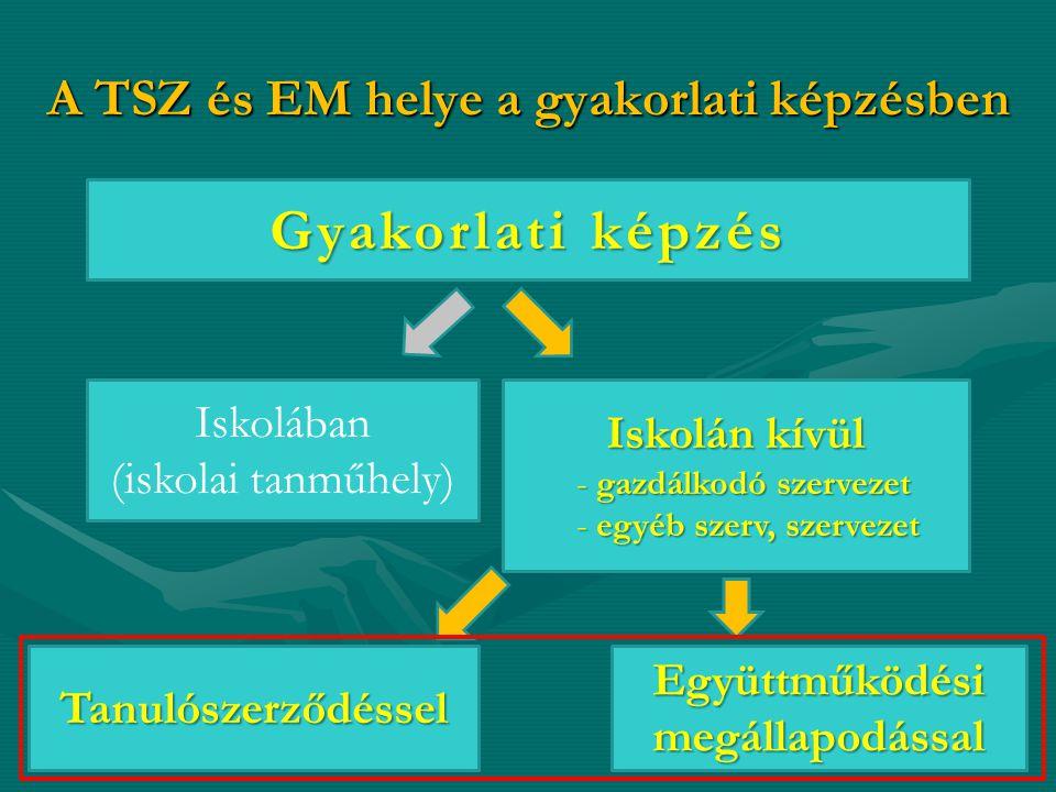 A TSZ és EM helye a gyakorlati képzésben 3 Gyakorlati képzés Iskolában (iskolai tanműhely) Iskolán kívül - gazdálkodó szervezet - egyéb szerv, szervezet Együttműködési megállapodással Tanulószerződéssel