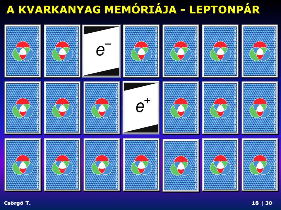 Csörgő T. A KVARKANYAG MEMÓRIÁJA - EGY MEZON 19 | 30