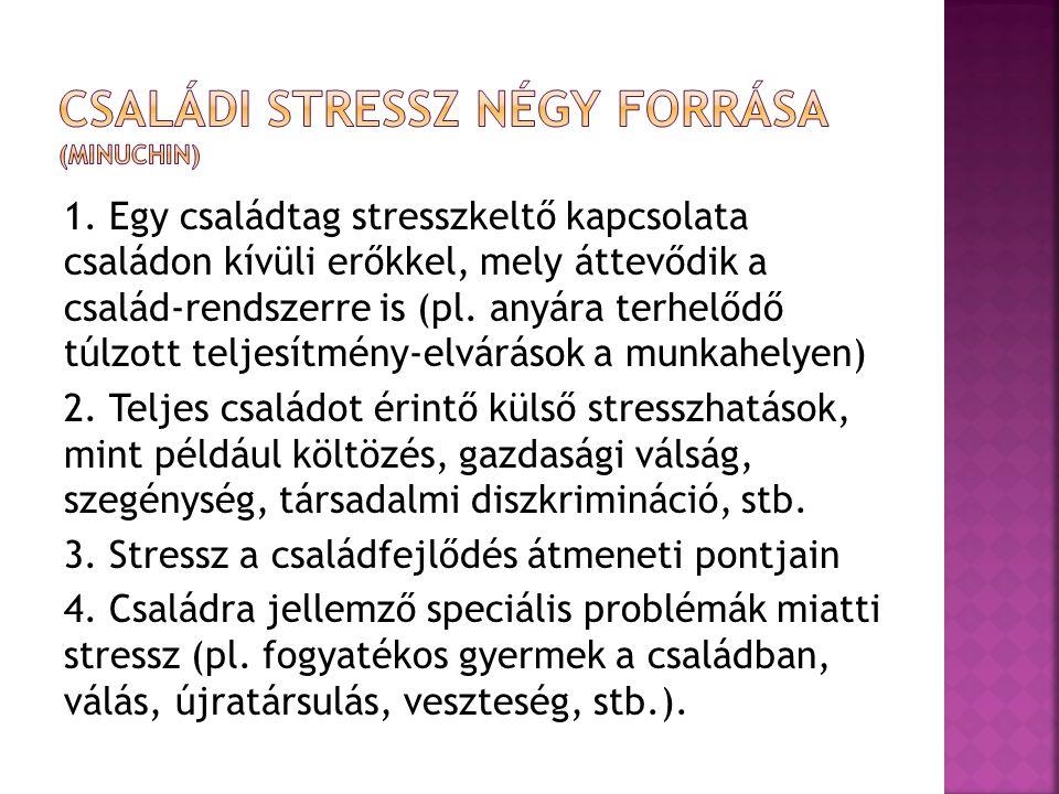 1. Egy családtag stresszkeltő kapcsolata családon kívüli erőkkel, mely áttevődik a család-rendszerre is (pl. anyára terhelődő túlzott teljesítmény-elv