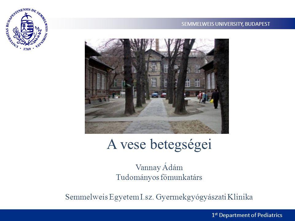 1 st Department of Pediatrics SEMMELWEIS UNIVERSITY, BUDAPEST A vese betegségei Vannay Ádám Tudományos főmunkatárs Semmelweis Egyetem I.sz. Gyermekgyó