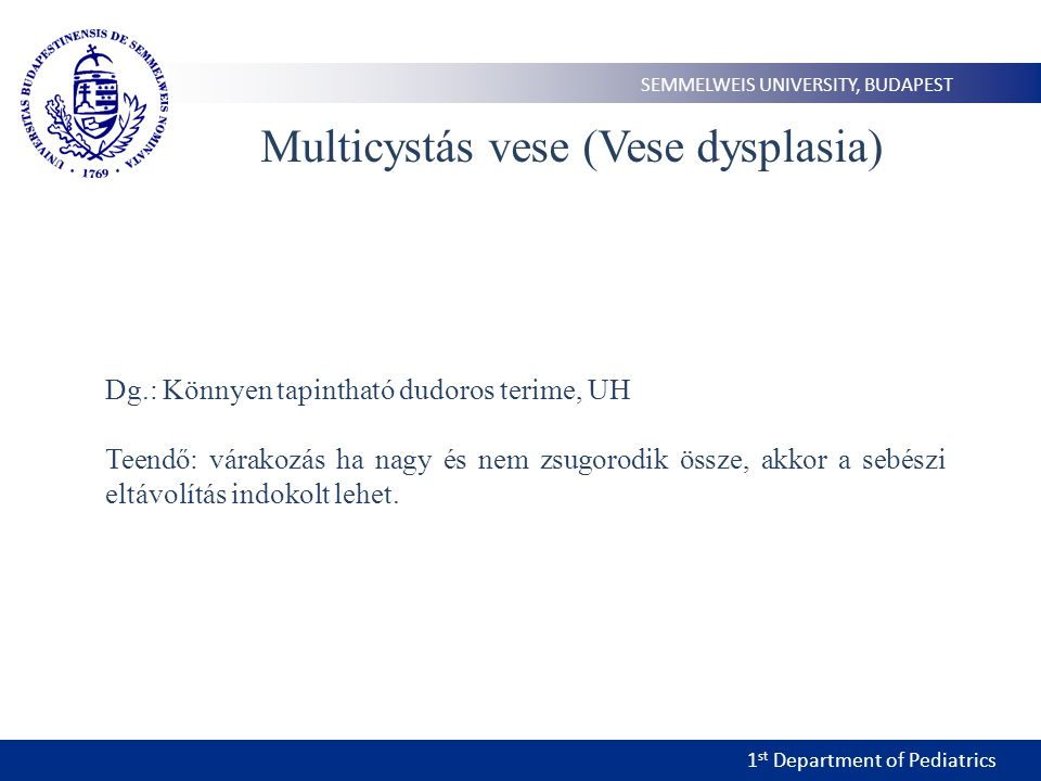 1 st Department of Pediatrics SEMMELWEIS UNIVERSITY, BUDAPEST Multicystás vese (Vese dysplasia) Dg.: Könnyen tapintható dudoros terime, UH Teendő: vár