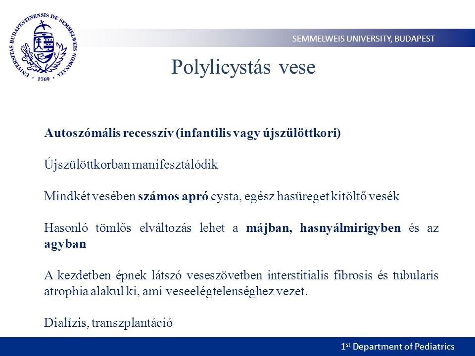 1 st Department of Pediatrics SEMMELWEIS UNIVERSITY, BUDAPEST Polylicystás vese Autoszómális recesszív (infantilis vagy újszülöttkori) Újszülöttkorban