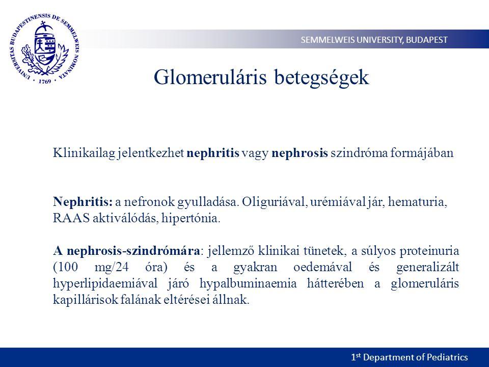1 st Department of Pediatrics SEMMELWEIS UNIVERSITY, BUDAPEST Glomeruláris betegségek Klinikailag jelentkezhet nephritis vagy nephrosis szindróma formájában Nephritis: a nefronok gyulladása.