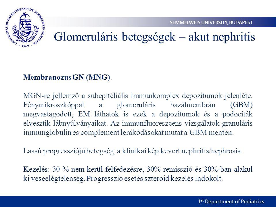 1 st Department of Pediatrics SEMMELWEIS UNIVERSITY, BUDAPEST Membranozus GN (MNG). MGN-re jellemző a subepitéliális immunkomplex depozitumok jelenlét