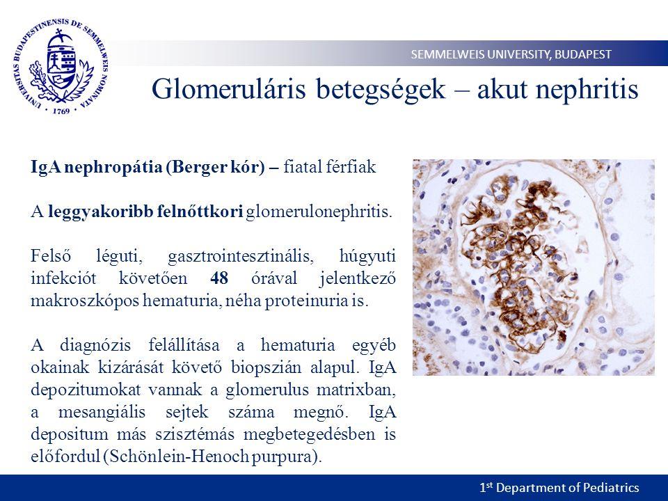 1 st Department of Pediatrics SEMMELWEIS UNIVERSITY, BUDAPEST Glomeruláris betegségek – akut nephritis IgA nephropátia (Berger kór) – fiatal férfiak A leggyakoribb felnőttkori glomerulonephritis.