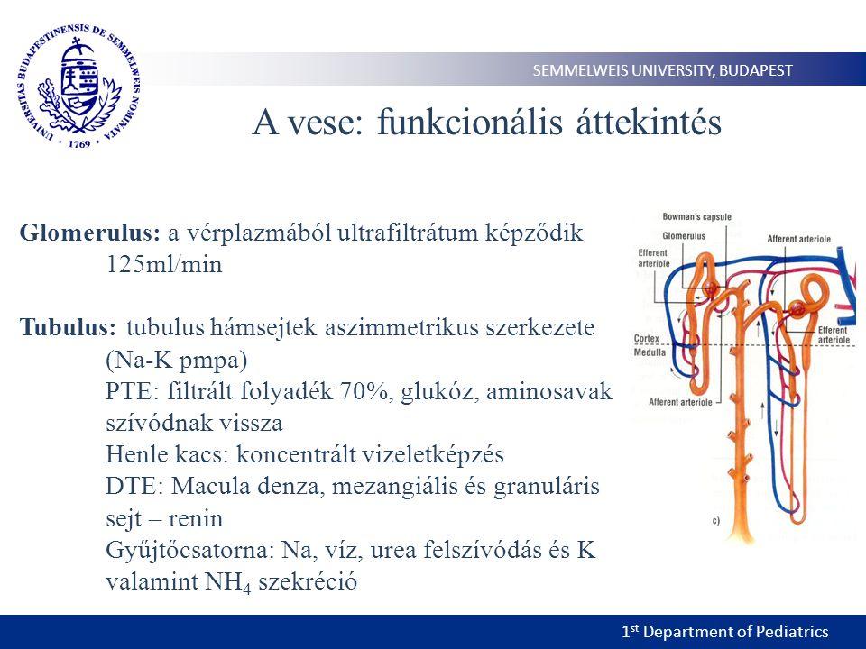 1 st Department of Pediatrics SEMMELWEIS UNIVERSITY, BUDAPEST A vese megbetegedései 1.Obstruktív uropátiák 2.Gyulladás 3.Cystás 4.Glomeruláris 5.Tubuláris